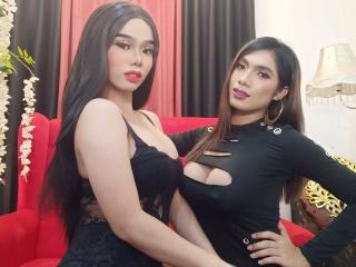 WildSexDuoTS - Live sex cam - 8318892